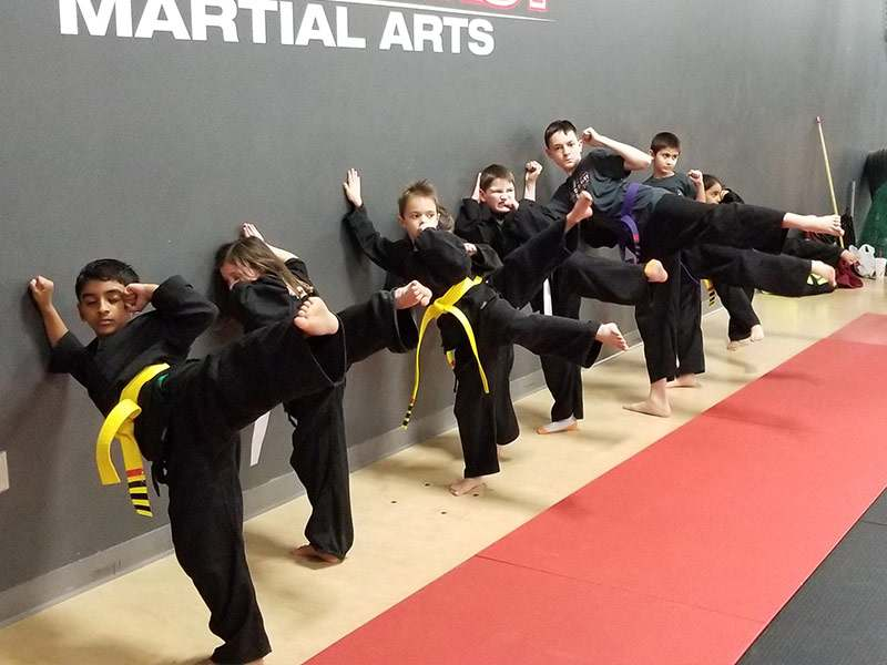 K8, Family First Martial Arts in Franklin, TN